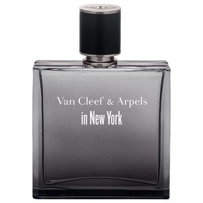 Perfume Van Cleef & Arpels In New York Eau De Toilette 125ml Masculino