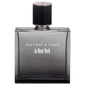 Perfume Van Cleef & Arpels In New York Eau De Toilette 85ml Masculino